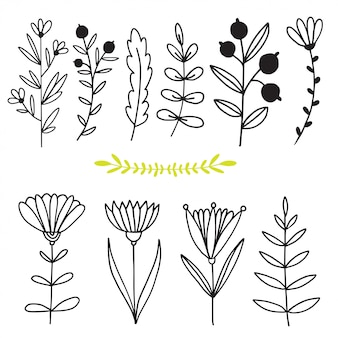 Blumen und zweige. hand gezeichnete natursammlung