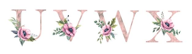 Blumenalphabet u, v, w, x.
