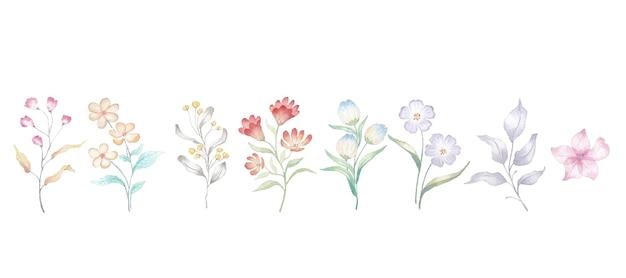 Blumenaquarellelementsammlungsvektor