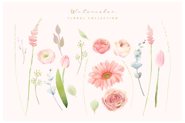 Blumenaquarellsammlung