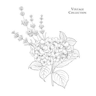 Blumengirlande der hortensie.
