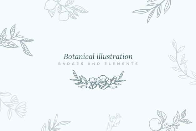 Blumenhintergrund mit botanischer abbildung