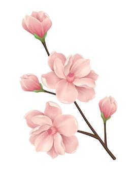 Blumenhintergrundauslegung Kostenlosen Vektoren