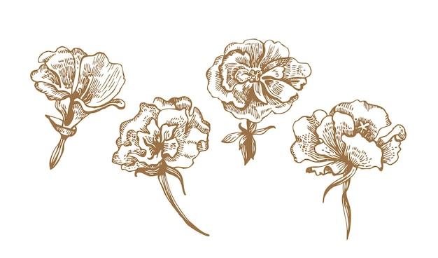 Blumenkollektion