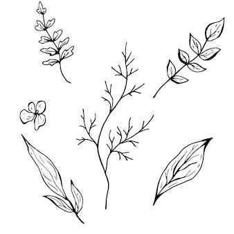 Blumenkritzel. hand gezeichnete vektorillustration. monochrome schwarzweiss-tuschenskizze. strichzeichnungen. auf weißem hintergrund isoliert. malvorlagen.