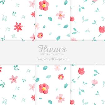 Blumenmusteransammlung in der aquarellart