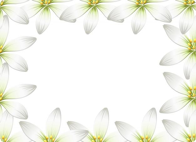 Blumenrahmen hintergrund