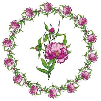 Blumenrahmen mit pfingstrosen