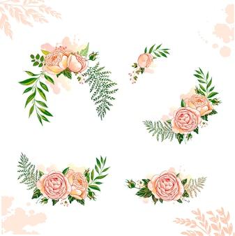 Blumensammlung rose