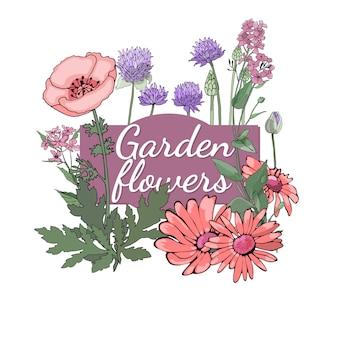 Blumenset sommer und frühling trennten gartenblumen und -kräuter mit ringelblume, mohnblume, schnittlauch.