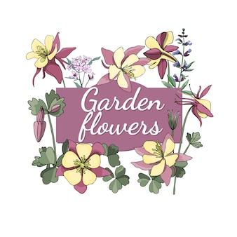 Blumenset sommer und frühling trennten gartenblumen und -kräuter mit salbei, akelei.