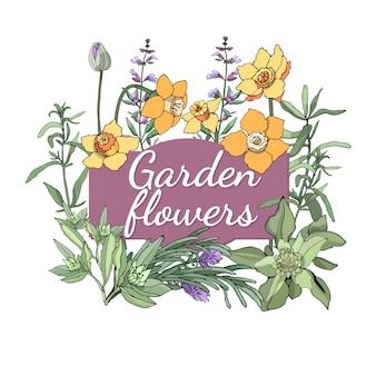 Blumenset sommer und frühling trennten gartenblumen und -kräuter mit salbei, lavendel, estragon, schnittlauch, narzisse.