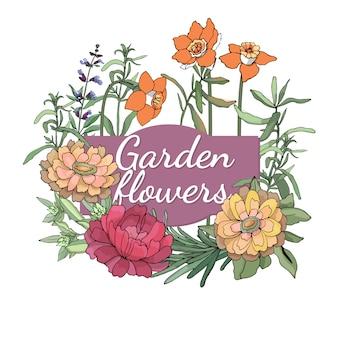 Blumenset sommer und frühling trennten gartenblumen und -kräuter mit zinnia, pfingstrose, estragon, narzissen, rosmarin.