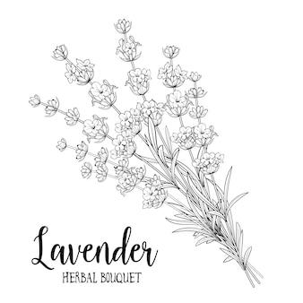 Blumenstrauß aus lavendel.