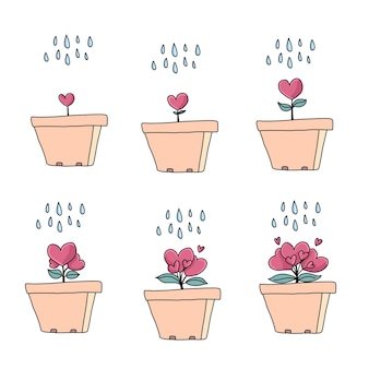 Blumentöpfe gesetzt