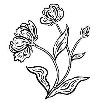 Blumenzweig mit blättern. handgezeichnete vektor-illustration. monochrome schwarz-weiß-tintenskizze.
