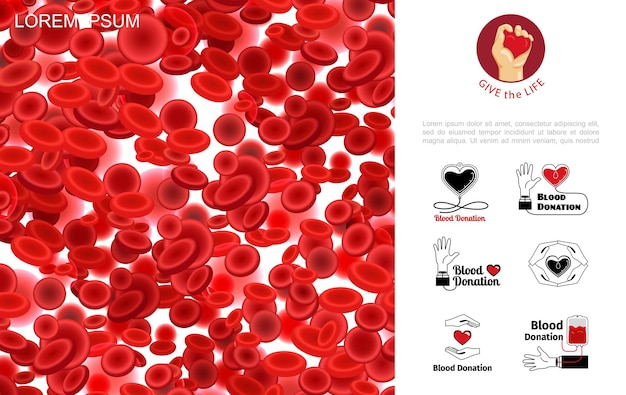 Blutspendekonzept mit blutigen roten blutkörperchen oder erythrozyten in realistischer stilillustration,