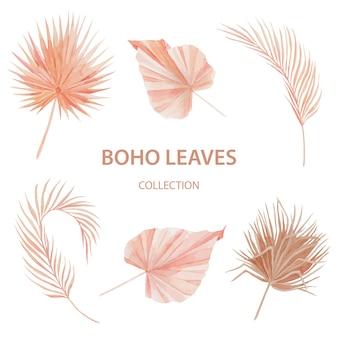 Boho hinterlässt elemente getrocknetes palmblatt