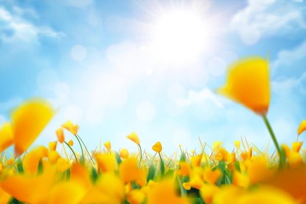 Bokeh gelbe blumen und blauer himmelhintergrund in der 3d illustration