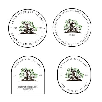Bonsai-vintage-baum-logo-vorlage