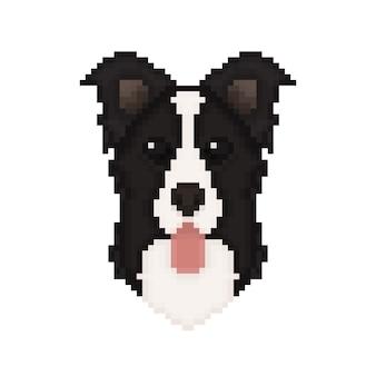Border-collie-hundekopf in der pixelkunstart.