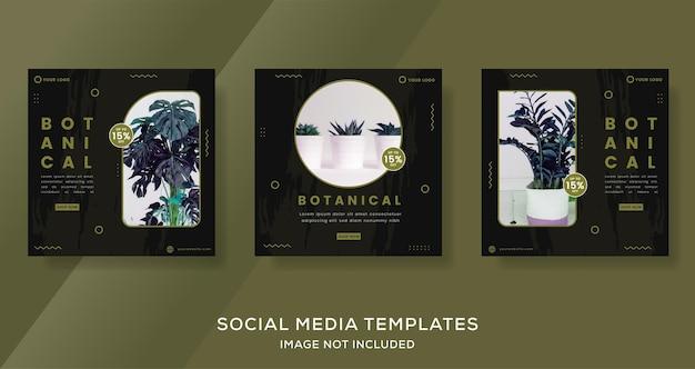 Botanik-banner-vorlage für social-media-instagram-post-premium-vektor