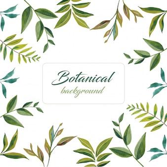 Botanische artillustrationen des grünen blattes des aquarells im kreisdesign auf illustrationsrahmen des weißen hintergrunds