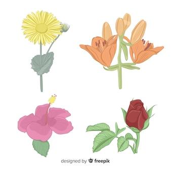 Botanische blumen- und blattsammlung