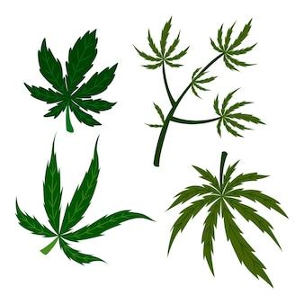 Botanische cannabisblätter