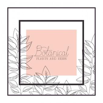 Botanische pflanzen- und kräuteretikett