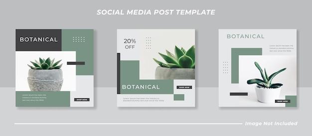 Botanische social media post vorlage