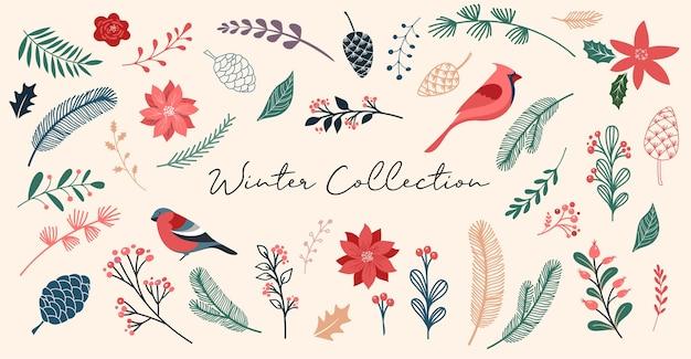 Botanische weihnachten, weihnachtselemente, winterblumen, blätter, vögel und tannenzapfen