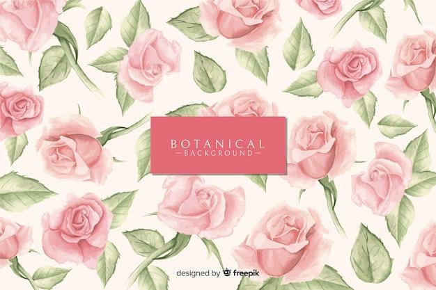 Botanischer hintergrund