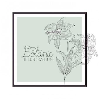 Botanischer illustrationsaufkleber mit anlagen