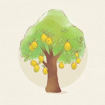 Botanischer mangobaum des aquarells mit früchten