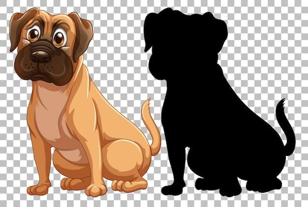 Boxerhund und seine silhouette