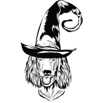 Boykin spaniel hund im hexenhut für halloween
