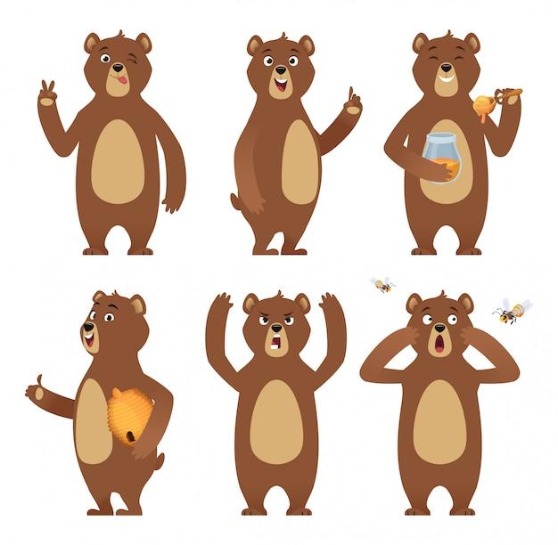 Braunbär-cartoon. das wilde tier, das an der unterschiedlichen haltungsnatur-charaktersammlung steht