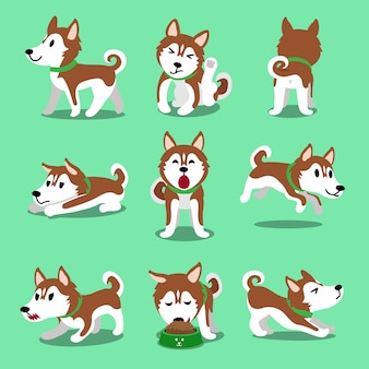 Braune siberian husky hund zeichentrickfiguren