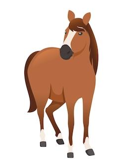 Braunes pferd wildes oder haustierkarikaturdesign flache vektorillustration