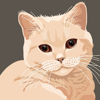 Britische lila katze illustration