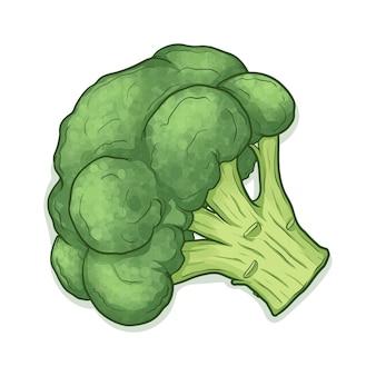 Brokkoli isoliert auf weiß
