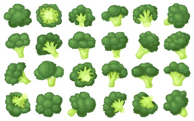 Brokkoli krümel cartoon set symbol.