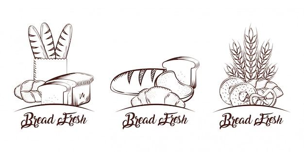 Brot-sammlungsprodukte-lebensmittelbäckerei-skizzenweinlese