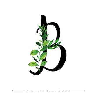 Buchstabe b mit aquarell verlässt hintergrund