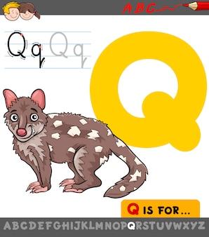 Buchstabe q mit cartoon-quoll