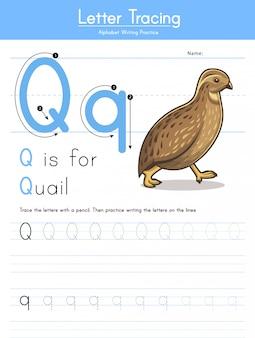 Buchstabe q verfolgung des tieralphabets q für wachtel