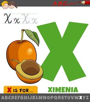 Buchstabe x arbeitsblatt mit cartoon ximenia frucht