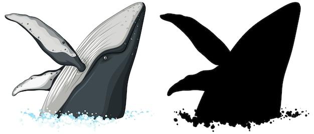 Buckelwal charaktere und seine silhouette auf weißem hintergrund