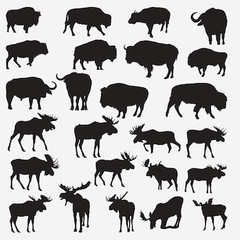 Büffel-elch-silhouetten